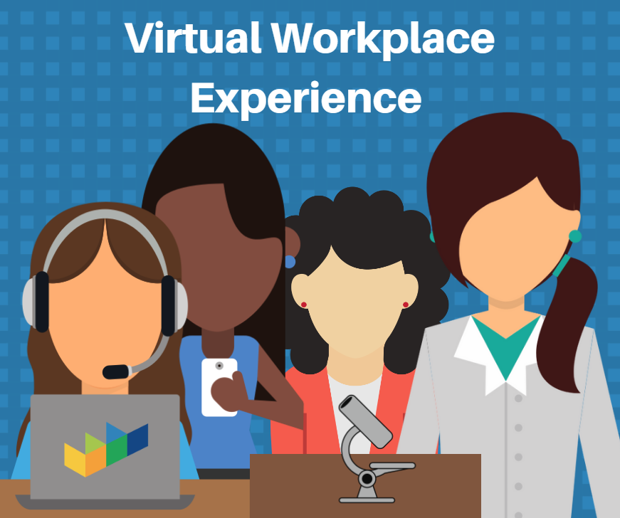 Virtual Workplace Experience