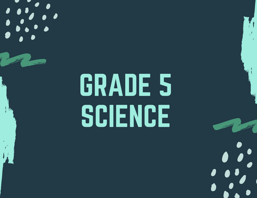 Grade 5 Science