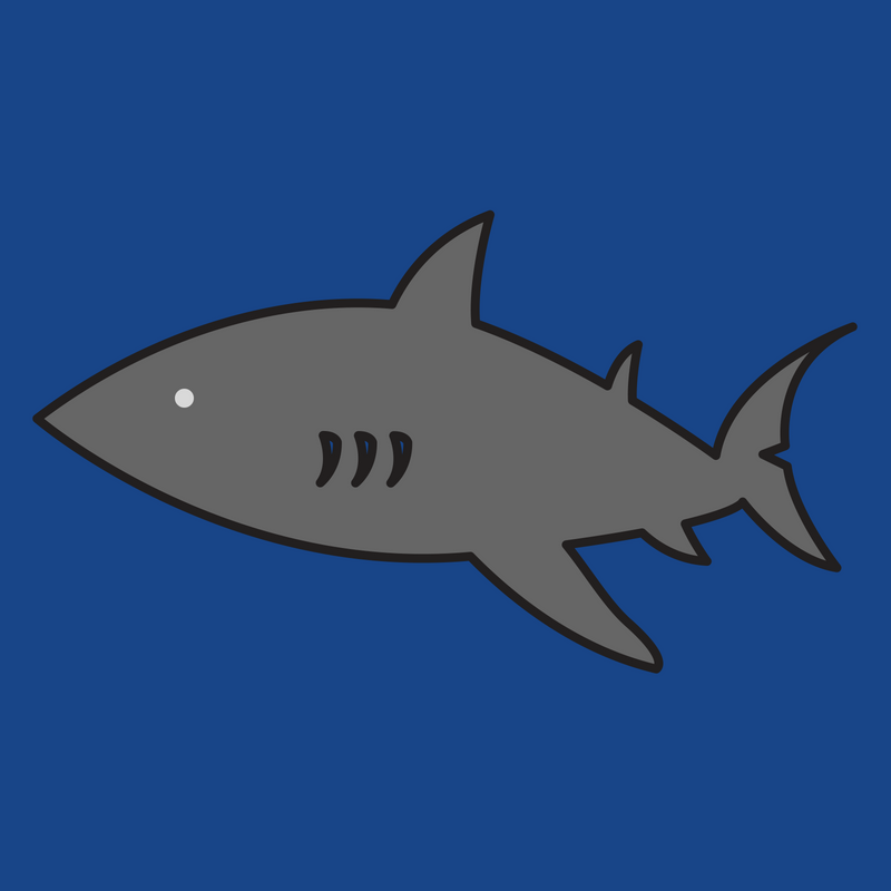 Shark Week Preview Session (Grades 3-5)