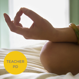 Mindfully Handling End-of-School Year Stress! Empowerment Tools for Teachers