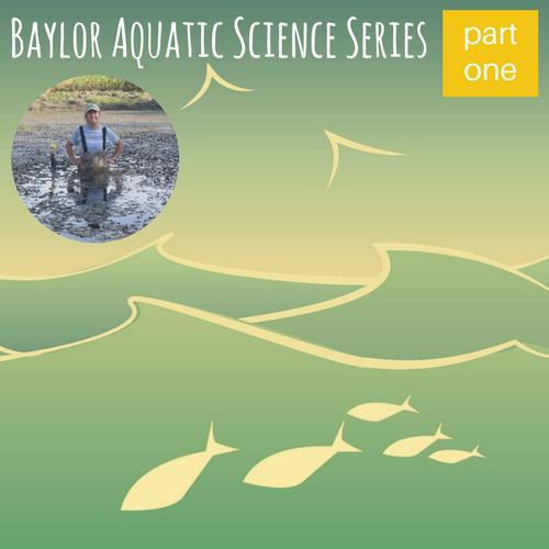 Baylor Aquatic Science Series- Meet Aquatic Scientist Melissa Mullins